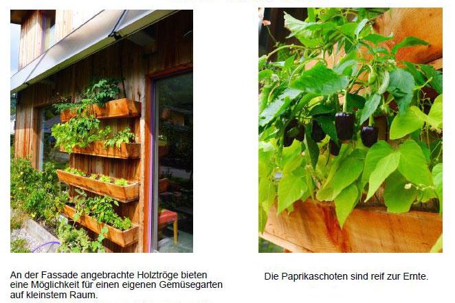 vertikalgarten-foto-web