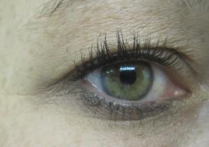 Auge_1