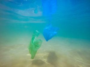 いつかは魚よりゴミのほうが多くなる